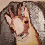 capriolo-dipinto-su-ardesia-particolare