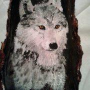 lupo-su-corteccia