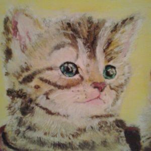 quadretto-particolare-gatto
